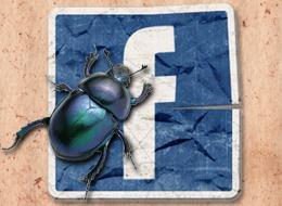 facebook-bug.jpg