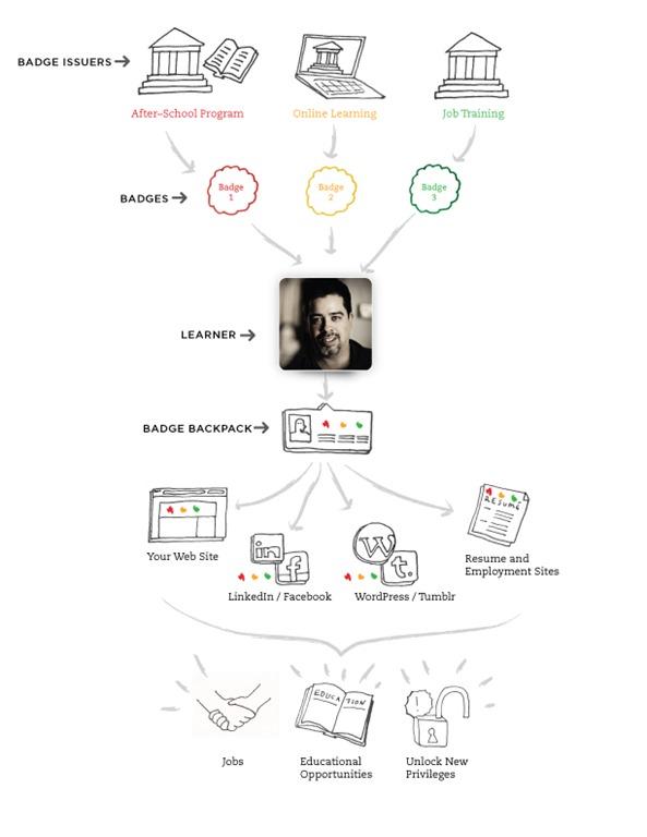 Badge-diagram-2.2.jpg