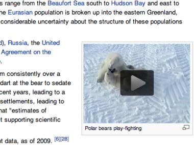 أخيراً ويكيبيديا تضيف محتوى الفيديو