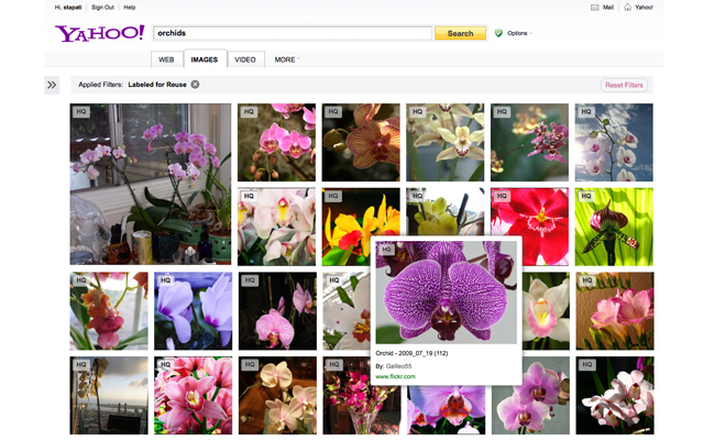 الصور ياهوو فليكر