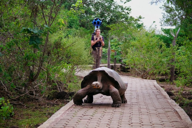 GP2 Google takes you on a journey of beauty and splendor: the Galapagos Islands