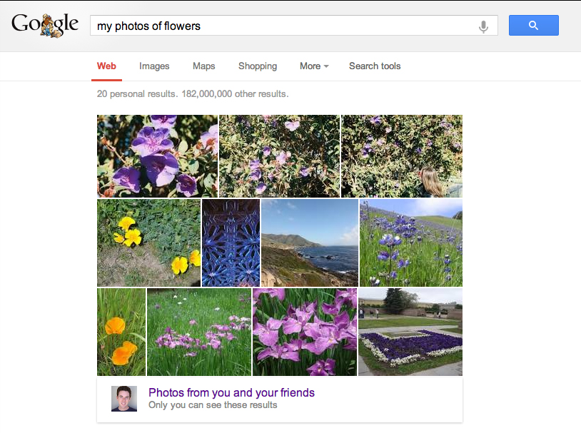 google Google makes it easier for the user search process at your own pictures