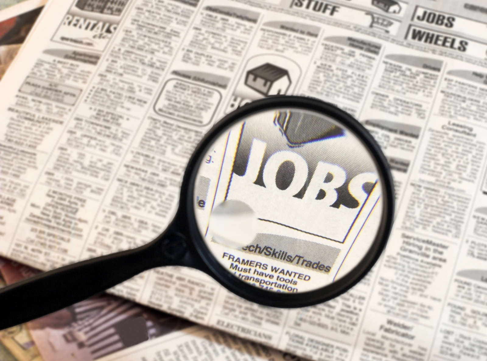 _job-seeker