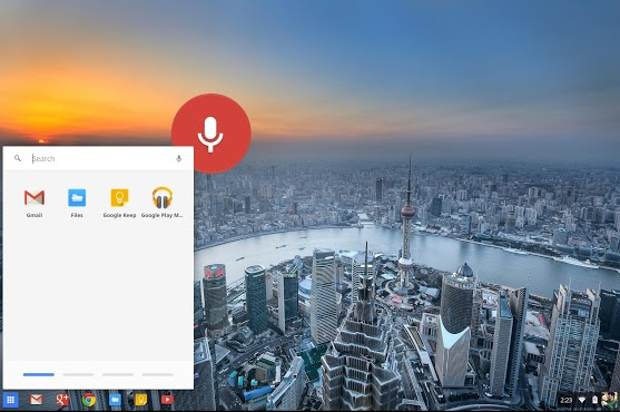 Chromebook voice