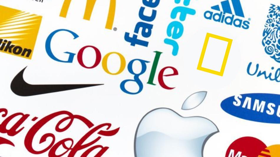 أفضل علامات تجارية تواجداً الشبكات