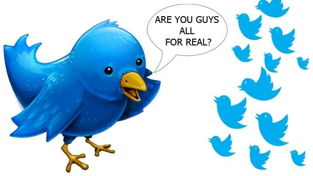 Fake-twitter-followers