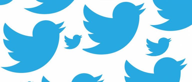 tweetbirds-1-980x420-768x329.png