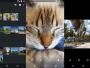 تطبيق Focus Go معرض صور جديد على أندرويد