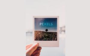 تطبيقPexels مجتمع لأخذ الصور ومشاركتها بدون حقوق ملكية