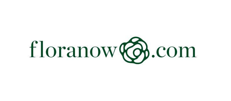منصة Floranow تُغلق جولة استثمارية بقيمة 300 ألف دولار بقيادة ومضة