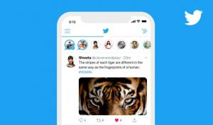 تويتر تطلق ميزة القصص Fleets رسمياً في الهند