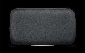 جوجل توقف مكبر الصوت المنزلي الضخم Home Max