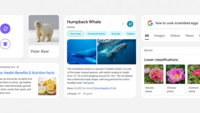 جوجل تحدّث تصميم صفحة نتائج البحث عبر الهواتف الذكية لعرض النتائج بصورة أفضل
